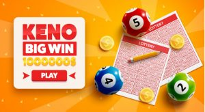 Indicators On New Bingo Sites UK 2018 You Should Know